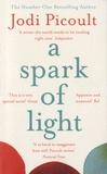 Jodi Picoult - A Spark of Light.