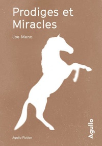 Joe Meno - Prodiges et miracles.