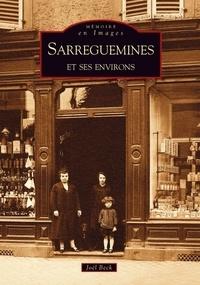 Joël Beck - Sarreguemines et ses environs.