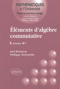 Eléments dalgèbre commutative - Niveau M1.pdf