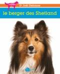 Joël Dehasse - Le berger des Shetland.