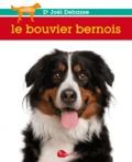 Joël Dehasse - Le bouvier bernois.