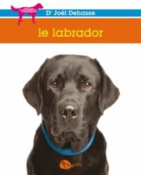 Joël Dehasse - Le labrador.