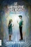Johanne Gagné - Le labyrinthe des rêves - Tome 1 : Le choc des mondes.