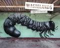 Jonk - Wastelands - L'art en friche.