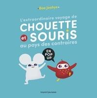 Joohye Bae - L'extraordinaire voyage de Chouette et Souris au pays des contraires - En pop-up.