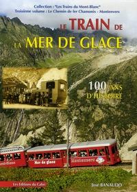 José Banaudo - Le Train de la Mer de Glace - Le Chemin de fer Chamonix-Montenvers.