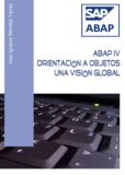 Jose Ignacio Mendez Yanes - ABAP IV Orientación a bjetos. Una visión global.