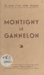 Joseph Beillard - Le passé d'une petite bourgade : Montigny le Gannelon.