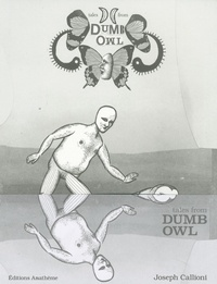 Joseph Callioni - Dumb Owl.