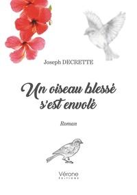 Joseph Decrette - Un oiseau blessé s'est envolé.