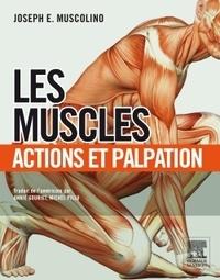 Histoiresdenlire.be Les muscles : actions et palpation Image