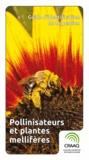 Joseph Moisan-De-Serres et France Bourgouin - Guide d'identification et de gestion - Pollinisateurs et plantes mellifères.