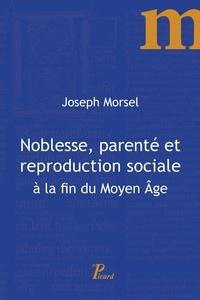 Joseph Morsel - Noblesse, parenté et reproduction sociale à la fin du Moyen Age.