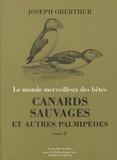Joseph Oberthür - Canards sauvages et autres palmipèdes - Tome 2, Les plongeurs, les tubinares, les longipennes, les totipalmes.