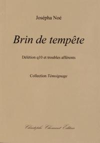 Josépha Noé - Brin de tempête - Délétion q10 et troubles afférents.
