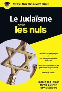 Josy Eisenberg et Ted Falcon - Le Judaïsme pour les nuls.