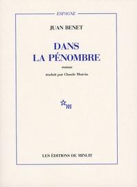 Juan Benet - Dans la pénombre.
