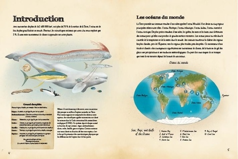 Animaux marins du monde