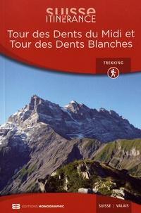 Jules-Henri Gabioud - Tour des Dents du Midi et Tour des Dents Blanches.