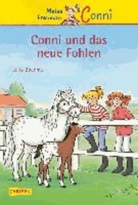 Julia Boehme - Meine Freundin Conni 22: Conni und das neue Fohlen.