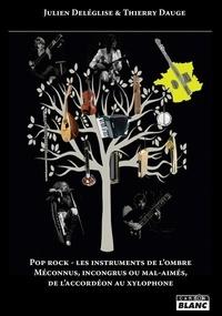 Julien Deléglise et Thierry Dauge - Pop rock - Les instruments de l'ombre - Méconnus, incongrus ou mal-aimés, de l'accordéon au xylophone.