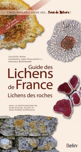 Juliette Asta et Chantal Van Haluwyn - Guide des lichens de France - Lichens des roches.
