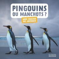 Histoiresdenlire.be Pingouins ou manchots ? Image