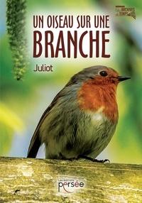 Juliot - Un oiseau sur une branche.