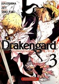 Jun Eishima et  Zet - Drakengard Tome 3 : .