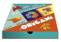 Junko Hirota - Kit d'initiation à l'origami - Avec 80 feuilles.
