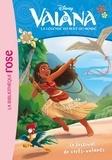Kalikolehua Hurley et  The Disney Storybook Art Team - Vaiana, la légende du bout du monde Tome 12 : Le festival des cerfs-volants.