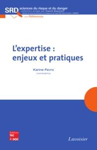 Karine Favro - L'expertise : enjeux et pratiques.