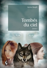 Karine Macgill - Tombés du ciel Tome 1 : .