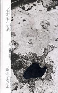 Karolina Ziebinska-Lewandowska - Ni cygne ni lune - Oeuvres tchèques 1950-2014 de la collection Claude et Henri de Saint-Pierre.