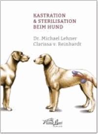 Kastration & Sterilisation beim Hund.