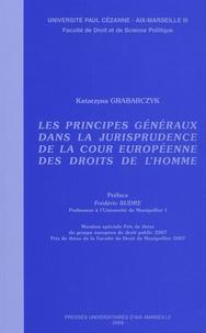 Accentsonline.fr Les principes généraux dans la jurisprudence de la Cour européenne des Droits de l'Homme Image