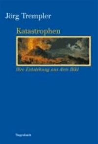 Katastrophen - Ihre Entstehung aus dem Bild.