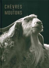 Histoiresdenlire.be Chèvres ou moutons Image