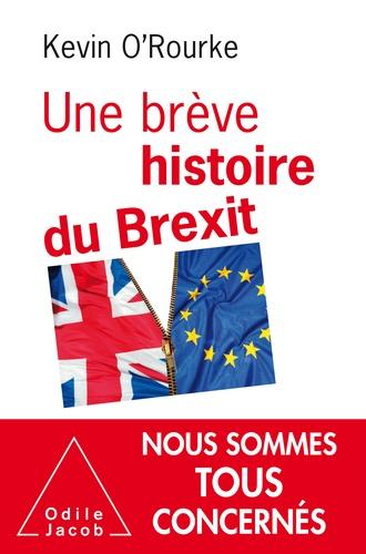Une brève histoire du Brexit - Format ePub - 9782738146267 - 16,99 €