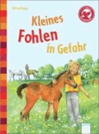 Kleines Fohlen in Gefahr - Der Bücherbär: Eine Geschichte für Erstleser.