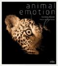 Kyriakos Kaziras - Animal Emotion.