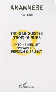 Claude Ravelet et Pierre Swiggers - Anamnèse N° 5/2009 : Trois linguistes (trop) oubliés : Antoine Meillet, Sylvain Lévi, Ferdinand Brunot.