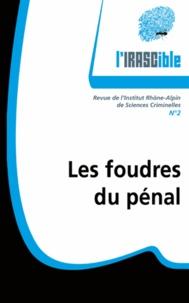 Jérôme Ferrand et Xavier Pin - L'IRASCible N° 2 : Les foudres du pénal.
