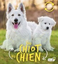 La bédoyère camilla De - Du chiot au chien.