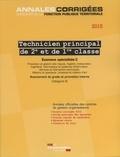 La Documentation Française - Technicien territorial principal de 2e et de 1e classe - Examens spécialités II, Avancement de grade et promotion interne, Catégorie B.