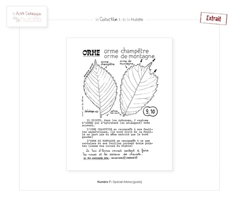 La Hulotte N° 7 Spécial arbres