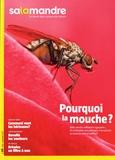 Julien Perrot - Salamandre N° 241, août-septemb : Pourquoi la mouche ?.