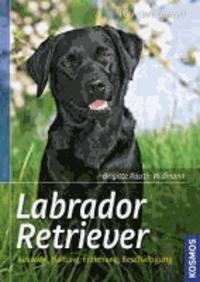 Labrador Retriever - Auswahl, Haltung, Erziehung, Beschäftigung.