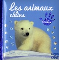 Langue au chat - Les animaux câlins.
